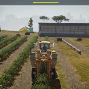 Récolte de raisins en Italie.