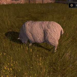 farming-simulator-17-moutons-animaux
