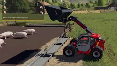 Photo of Farming Simulator 19 : quel maïs pour nourrir les cochons ?