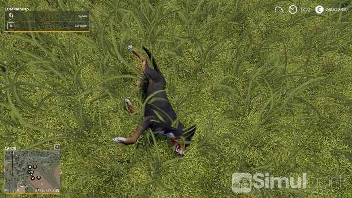 simulagri farming simulator 19 review 0156