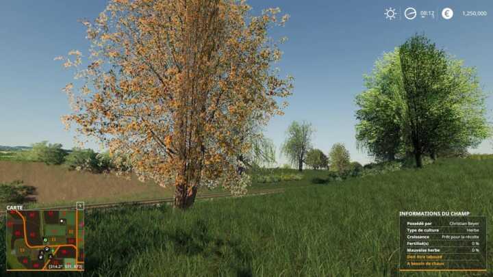 Ces arbres là ne font que de la figuration. Inutile de venir à la tronçonneuse.
