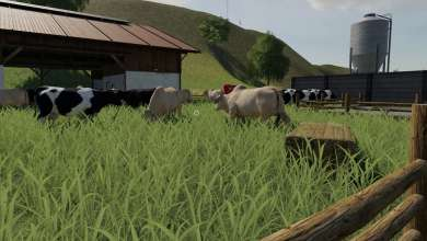 Photo of Animal Species apporte un peu de génétique sur Farming Simulator 19