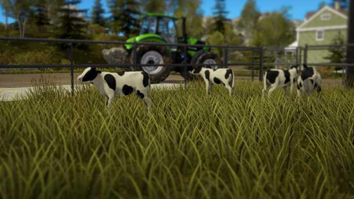 Dans Pure Farming, les bovins naissent veaux.