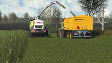 cattle and crops ensilage