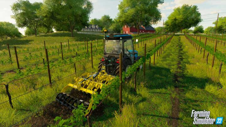 vignes olives fs22 04